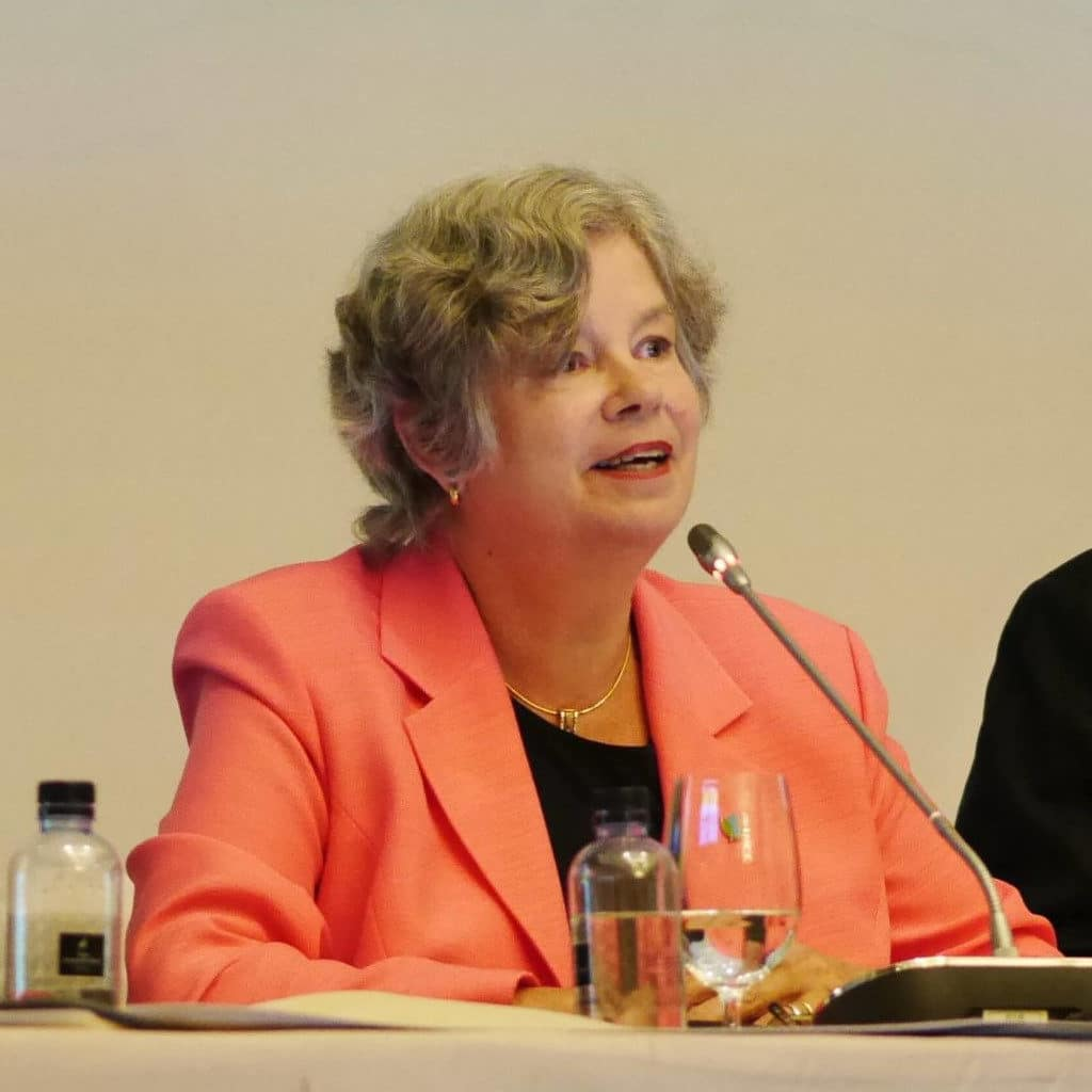 Gayle Avery addressing the G77